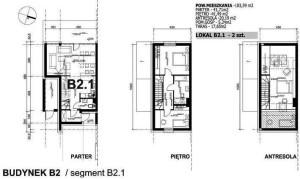 B.2.1.jpg